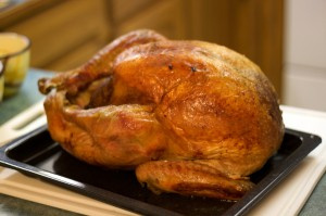thanksgiving turkey 300x199 On Being Green: Where Did Your Turkey Strut?