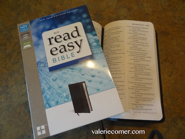 how to decide what to read in the bible