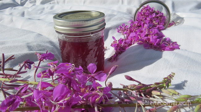 fireweed, fireweed jelly