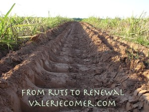 From Ruts to Renewal