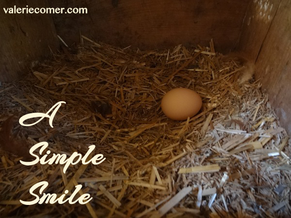 farm fresh eggs, simple smile