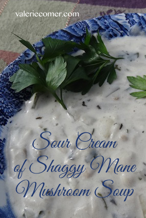 Sour Cream of Shaggy Mane Soup-2