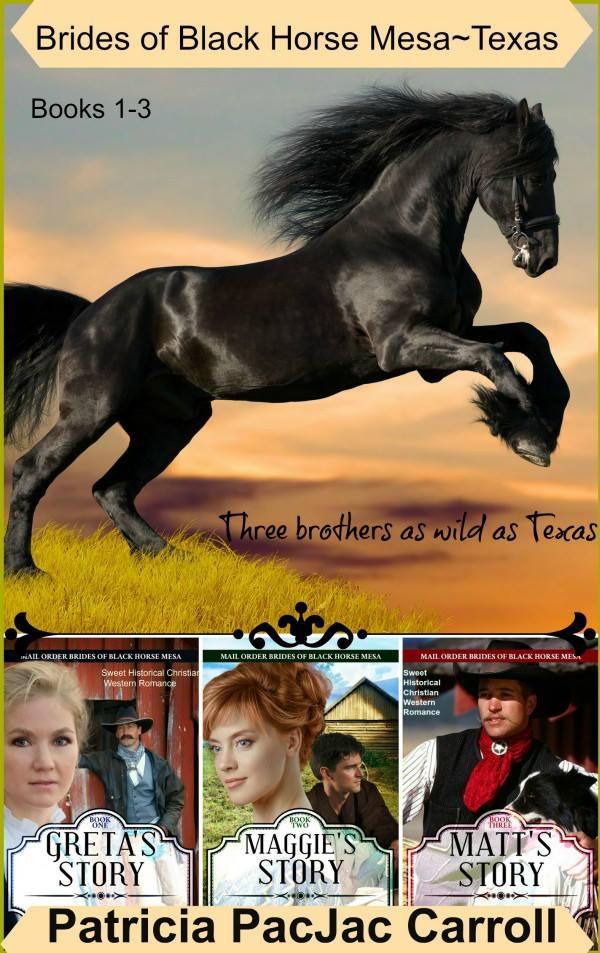 Brides of Black Horse Mesa 1-3 by Patricia PacJac Carroll